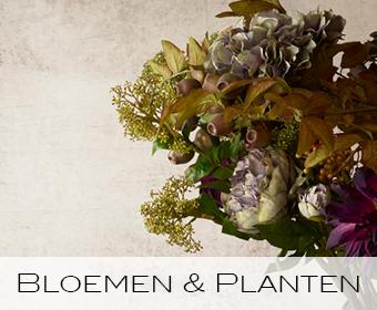 bloemen, planten, kunstbloemen, kunstplanten