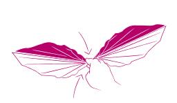plier une serviette en papillon festif étape 3