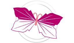 plier une serviette en papillon festif étape 6