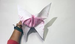 Vouwtechniek de grote vlinder stap 11