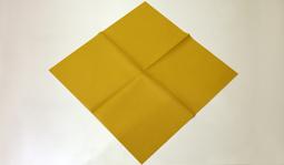 Vouwtechniek de platte waaier stap 1