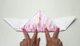 Vouwtechniek de grote vlinder stap 8