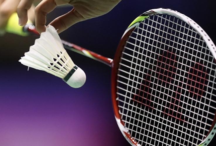 Badminton, rackets, kledij, pluimpjes - Sportline