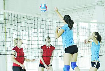 Volleyafdeling Sportline