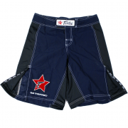 Fairtex Board Shorts AB1 (Klein logo)