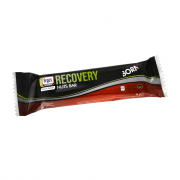 Born Recovery Bar Nuts