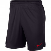Nike - PSG M NK DRY STRK SHORT KZ Netto