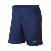 Nike - FC Barcelona