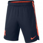 Nike - FC Barcelona Squad Short