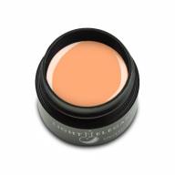 Gel Paint Pastel Orange