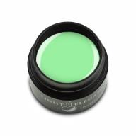 Gel Paint Pastel Green