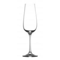 SAUVIGNON - champagneglass - 190 ML - glass - DIA 7 x H 23,5 cm