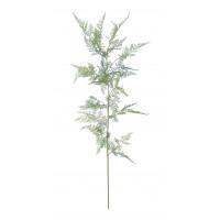 FERN - fern -  - H 147 cm - green