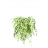 FERN - fougère tombante -  - H 90 cm - vert