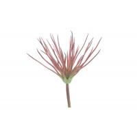 SUCCULENT - succulent - synthetics - H 25 cm