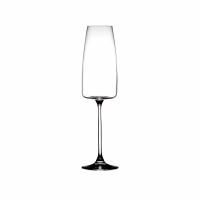MARGAUX - champagneglas - glas - DIA 6,6 x H 25 cm - transparant