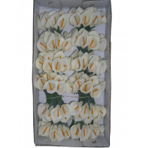 Aronskelk Mini Crème Foam 12 Stuks