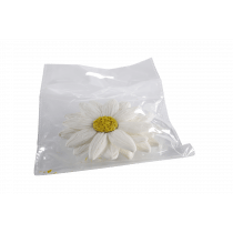 Bloemen Papier Wit 8cm Diameter 6 Stuks