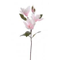 Magnolia 65cm Roze/Crème