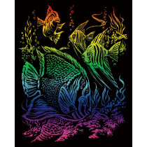 Regenboog Krasfolie Assortiment
