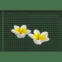 Kaars 0,5u 3,5cm 7cm Diameter Bloemen Wit/Geel 2 Stuks