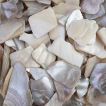 Shiny Shell Plates 20&40mm Naturel 200ml