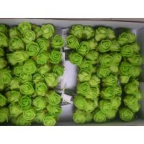 Roosjes Mini 2cm Lime Foam 12 Stuks