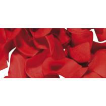 Bloemblaadjes 2,5cm Rood 10G Papier
