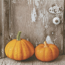 Servetten 33x33cm Two Pumpkins