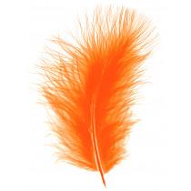Pluimpjes Oranje +/- 25 Stuks