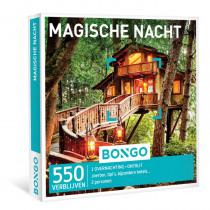Bongo NL Magische Nacht