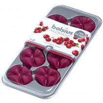 Bolsius Geurwax 8 Blokjes Wild Cranberry