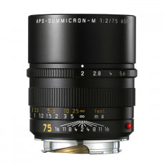 Leica 11637 APO-SUMMICRON-M 75mm f/2 ASPH black anodized finish