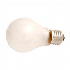 Lamp 220V 75W OPAAL VERGROTERSLAMP