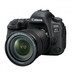 Canon EOS 6D MkII + EF24-105 STM