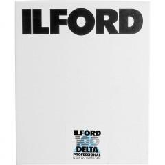 Ilford DELTA 100 PROF. 20.3 x 25.4 cm (8x10'') Zw/w