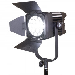 Ledgo D600 Fresnel (including bag)