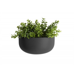 Hangpot muur Oval/wide Present Time