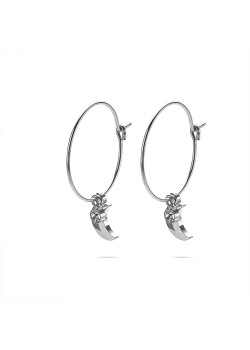 Stainless steel earrings, hoop earring with little moon and crystal
