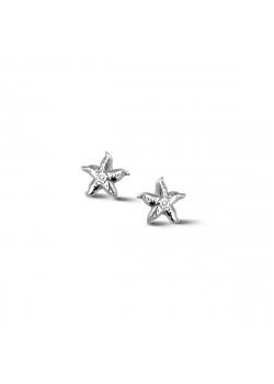 Silver earrings, starfish