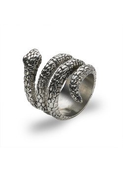 Stainless steel ring, snake
