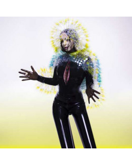 Björk - Vulnicura 2LP