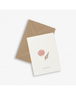 Greeting Card SEA SHELLS