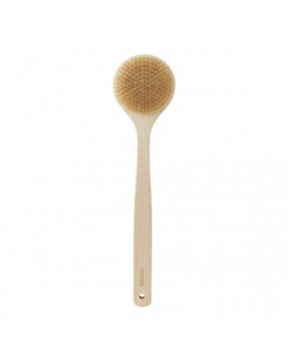 Body Brush large