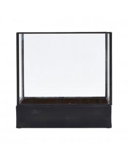Display box, Plant, l: 21 cm, w: 30 cm, cm, h: 30 cm