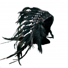The Indian Headdress