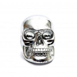 Silver Skull Head
