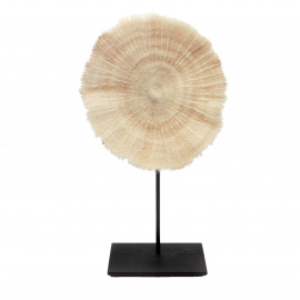 Coral Plate White on Stand