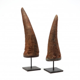 Cow Horn on Stand-unpolished