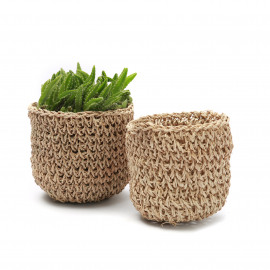 The Seagrass Planters  Set/2